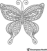 Butterfly Coloring Sheet Download